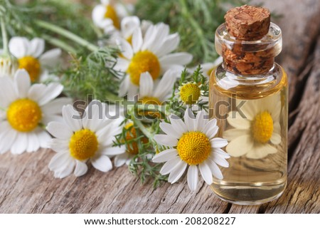 fragrant oil of chamomile flowers in a glass bottle macro on wooden table horizontal  - stock photo