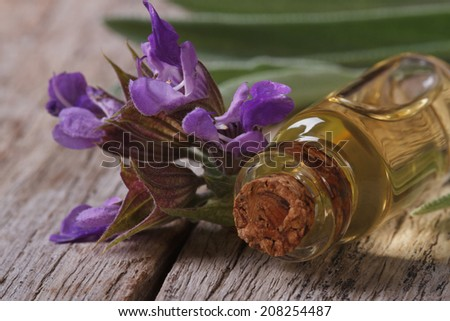 fragrant sage extract in a small bottle on the table macro. horizontal