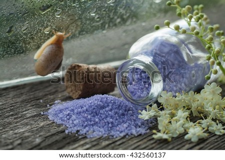 Fragrant salt for bathing . Beauty shop . For women . Bath salt . Salt with aroma of flowers . Abundance of aromas for a bathroom . Fragrant salt . Natural ingredient . Snail on glass - stock photo