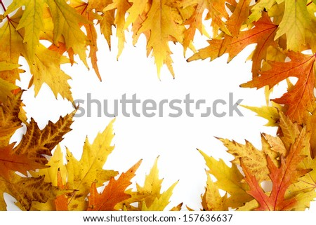 Frame composed of colorful autumn leaves over white background - stock photo