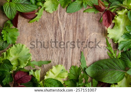 frame from salad leaves  - stock photo