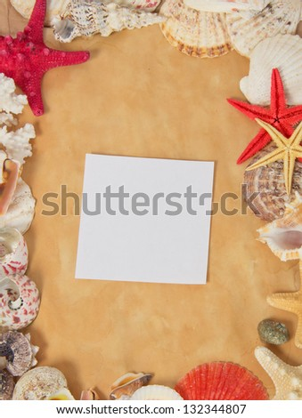 Frame from starfishes and cockleshells with blank card on old paper - stock photo