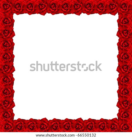 Frame from the roses with water drops - stock photo