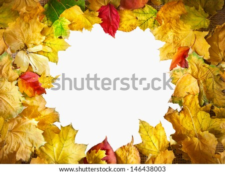 Frame from yellow, red and orange maple leaves isolated on white background. Free space for text - stock photo