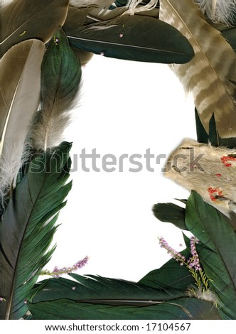 Frame made from raven feathers - stock photo