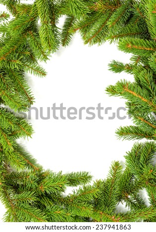 frame made of green spruce branches - stock photo
