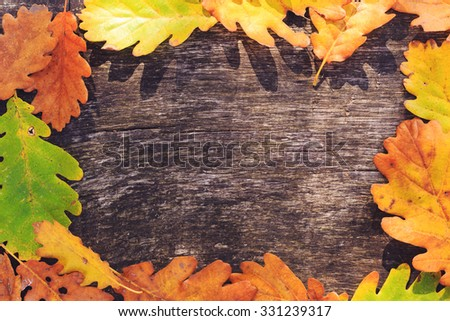 Frame made with colorful autumn oak leaves and on wooden background - stock photo