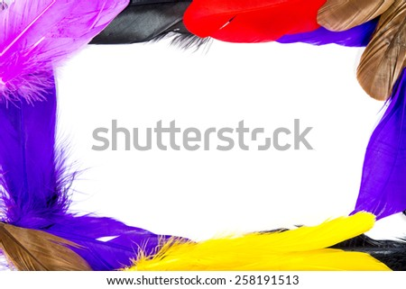 Frame of colorful feathers. - stock photo