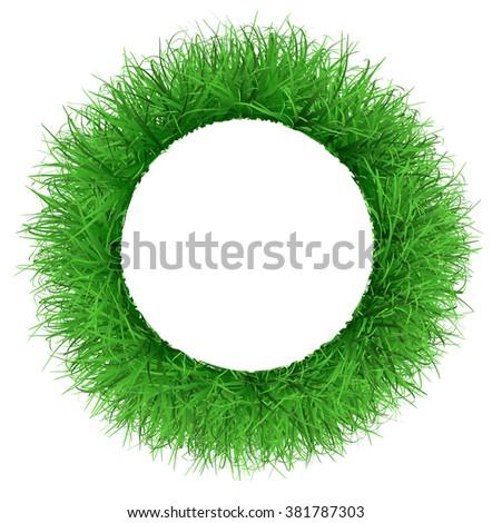 Frame the lush green grass - stock photo