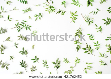 frame with flowers, branches, leaves and petals isolated on white background. flat lay, overhead view - stock photo