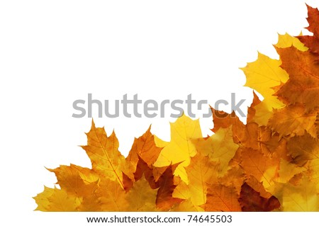 Framework from autumn leaves on a white background - stock photo