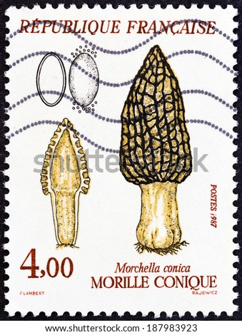 """FRANCE - CIRCA 1987: A stamp printed in France from the """"Fungi """" issue shows Morchella conica, circa 1987.  - stock photo"""
