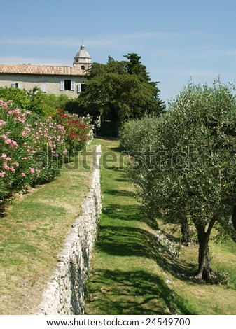 Franche olive garden with abbey on background - stock photo