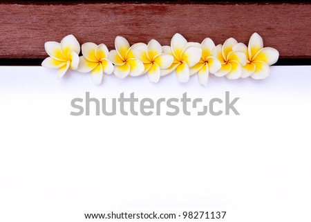 Frangipani Flower Frame with wooden background - stock photo