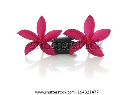 Frangipani flower with stacked of  zen rocks (selective focus and shallow DOF) with white background. - stock photo