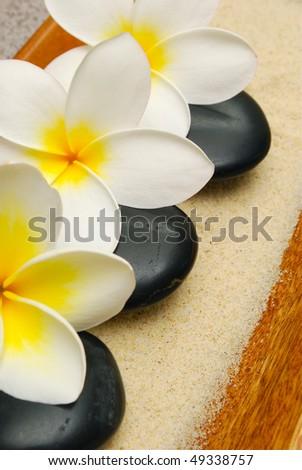 frangipani flowers with massage stones - stock photo