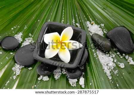 frangipani in bowl with stones ,salt on palm   - stock photo