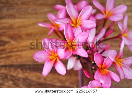 Frangipani or Plumeria flower on wooden background. Spa concept - stock photo