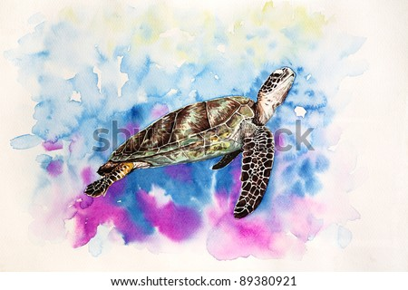 Free hand painting from watercolor demonstrated a Hawksbill Sea Turtle. - stock photo