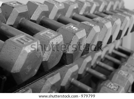 Free Weights on a Rack - stock photo