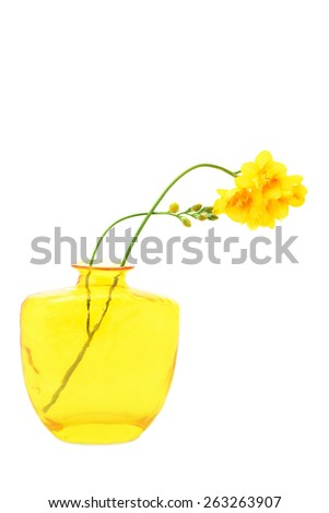 freesia flowers in glass vase, isolated on white - stock photo