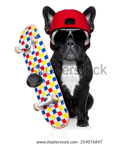 french bulldog dog, as a skater with red cap and skateboard, isolated on white background - stock photo