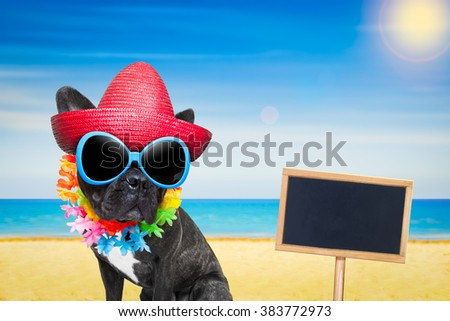 french bulldog dog at the beach with hat and sunglasses , relaxing summer vacation holidays, ocean shore as background, placard or blackboard - stock photo