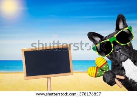 french bulldog dog enjoying  on summer vacation holidays at the beach - stock photo