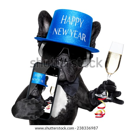 French bulldog dog ready to toast for new years eve taking a selfie