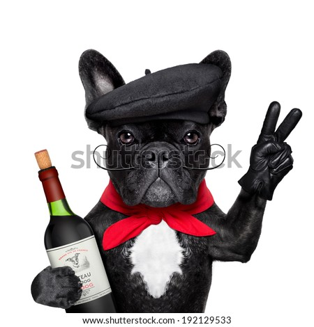 french bulldog with red wine,  peace or victory fingers and french beret - stock photo