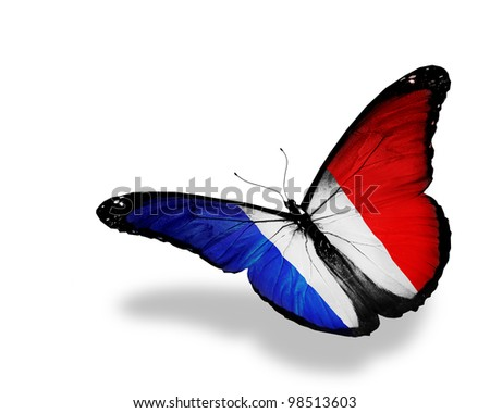 French flag butterfly, isolated on white - stock photo