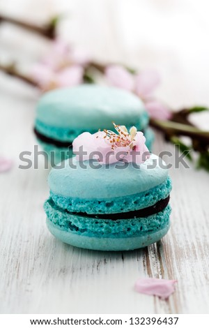 French macaroons in turquoise, decorated with cherry blossom - stock photo