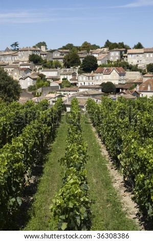 French vineyard with the village of Saint Emilion in the background - stock photo
