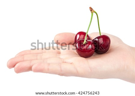Fresh a sweet cherry fruits in female hand isolated on white background. - stock photo