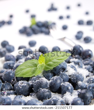 Fresh air currants and blueberries - stock photo