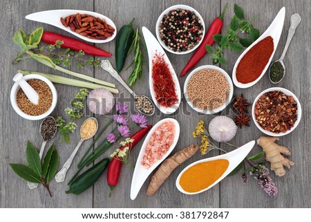 Fresh and dried herb and spice sampler over distressed grey wooden background. - stock photo