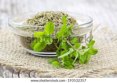 Fresh and dried Marjoram  - stock photo