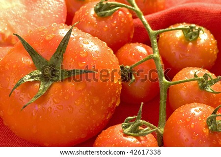 Fresh and juicy wet tomatoes - stock photo