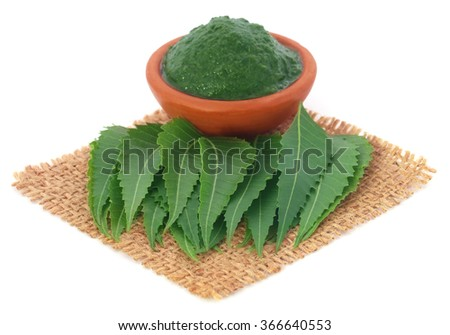 Fresh and mashed medicinal neem leaves ove white background - stock photo