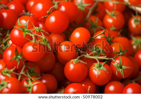 Fresh and tasty cherry tomato in grocery store. - stock photo