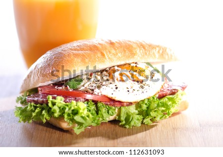 Fresh and tasty sandwich with organic egg - stock photo