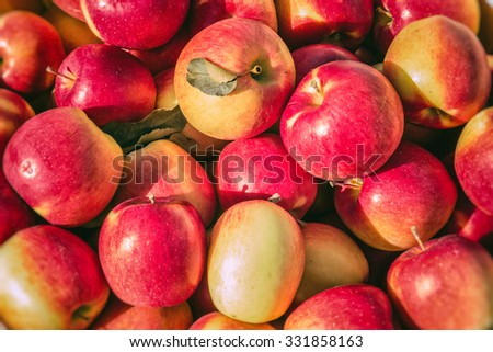Fresh Apples In Bushel. Apples in a basket, freshly picked in early autumn. - stock photo