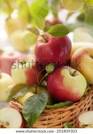 Fresh apples with leaves in basket - stock photo