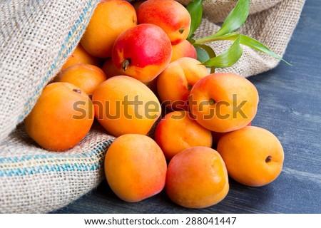 fresh apricots on burlap sack on wood - stock photo