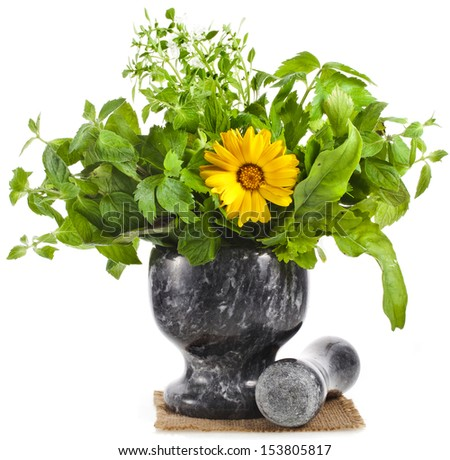 Fresh Aromatic Herb in black marble mortar isolated on white background - stock photo