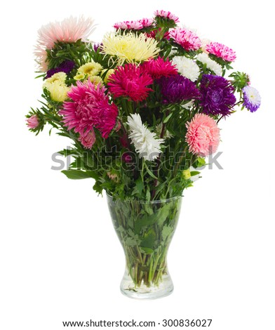 fresh aster flowers bouquet in glass  vase isolated on white background - stock photo