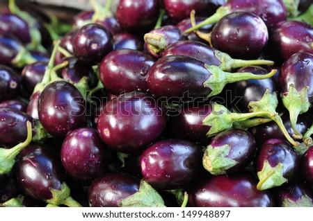 Fresh aubergines - eggplants - stock photo