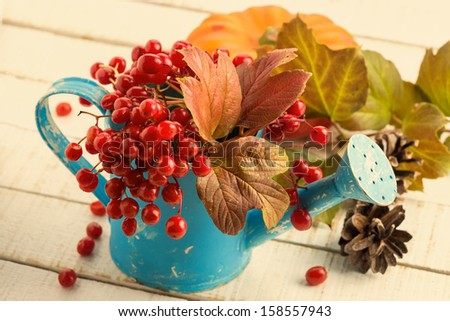 Fresh autumn berries in watering can on white wooden background. Postcard.Selective focus. - stock photo