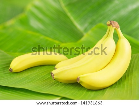 Fresh bananas on banana leaves - stock photo