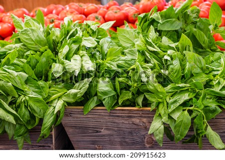 Fresh basil herb displayed at the farmers market - stock photo